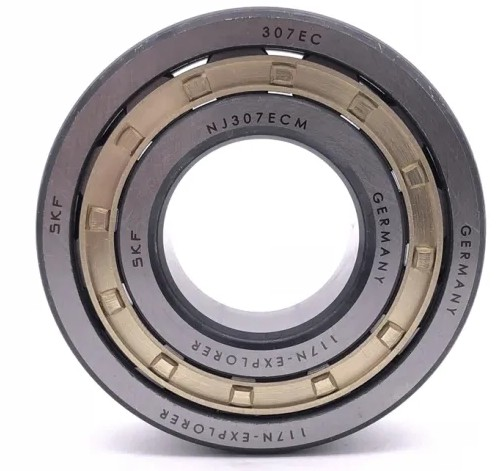 AST AST850SM 6050 plain bearings