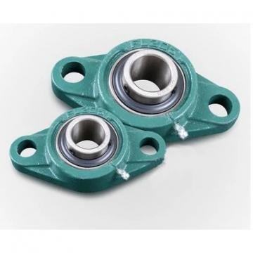 AST GE90ES plain bearings
